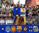 FIFA Klub-Weltmeisterschaft Japan 2011