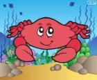 Zeichnung von Krabbe