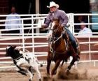 Amerikanischen Rodeo