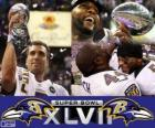 Baltimore Ravens Super Bowl 2013 Meister