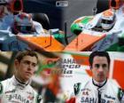 Sahara Force India F1 Team 2013