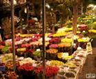 Blumenmarkt, Amsterdam, Niederlande