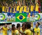 Brasilien Pokal FIFA Konföderationen 2013