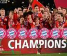 FC Bayern München, Champion Klub-Weltmeisterschaft 2013