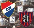 Club Nacional von Paraguay Vs San Lorenzo de Almagro von Argentinien. Final Copa Libertadores 2014