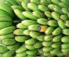 Grünen und gelben bananen