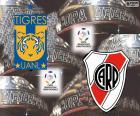 Final Copa Libertadores 2015