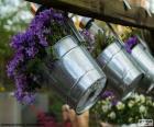 Blumen in Töpfen Metall