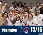 PSG-Meister 2015-2016