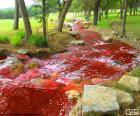 Landschaft mit einem roten fluss