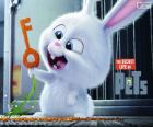 Snowball, ein weißen Kaninchen
