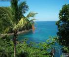 Das Meer von einer tropischen Insel