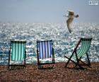 Drei Stühle von Strand und eine Möwe fliegen neben dem Ufer des Meeres
