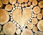 Rüssel in Form von Herzen