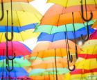 Der Regenschirm ist ein Objekt für schützen Sie sich vor Regen und eine Ergänzung der Mode, es gibt viele Muster und Farben