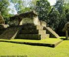 Est A-3, Seibal, Guatemala