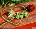 Herz und rose