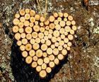 Herzen von trunks