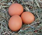 Drei Eiern