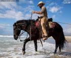 Cowboy am Meer