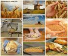 Collage aus Brot