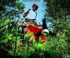 Gärtner mit einem Rasentrimmer