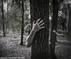 Der Wald des Schreckens