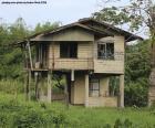Altes Haus im Wald