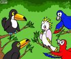 Fünf Vögel von Julieta Vitali