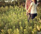 Ein junges paar verliebt, die durch die Landschaft schlendern