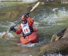 Wildwasserrennsport