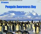 Pinguin-Bewusstseinstag