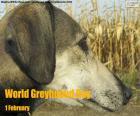 Welt Windhund Tag