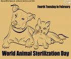 Welttag der Tiersterilisation