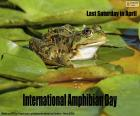 Internationaler Amphibientag