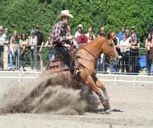 Reining - Western Reiten - Ride Cowboy puzzle