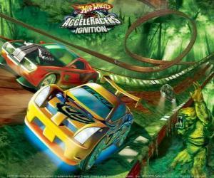 Rennwagen auf der Hot Wheels Rennstrecke puzzle