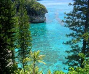 Riffe und Ökosysteme, die Französisch Inselgruppe Neukaledonien, befindet sich im Pazifischen Ozean. puzzle