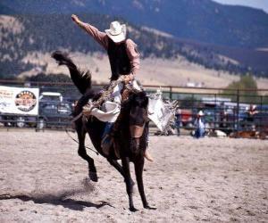 Rodeo - reiten von wildpferden mit sattel puzzle
