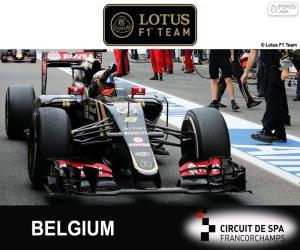 Romain Grosjean, GP Belgien 2015 puzzle