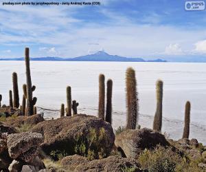 Salar de Uyuni, Bolivien puzzle