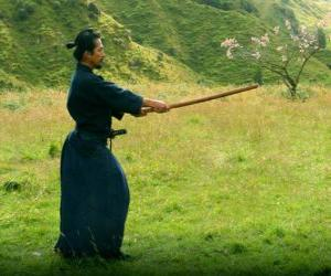 Samurai-training puzzle