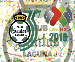Santos, der 2018 Clausura puzzle