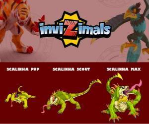 Scalinha in drei phasen Scalinha Pup, Scalinha Scott und Scalinha Max, Invizimals puzzle