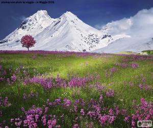 Schöne Landschaft der Alpen puzzle