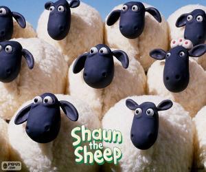 Schafe der Herde von Shaun puzzle