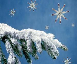 schneebedeckten Tannenzweig puzzle