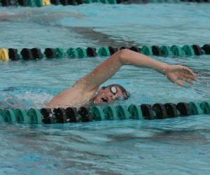 Schwimmer üben kraulshwimmen, kraulen oder kraul in der Gasse ein Wettkampfbecken puzzle
