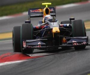 Sebastian Vettel der seinen F1 puzzle
