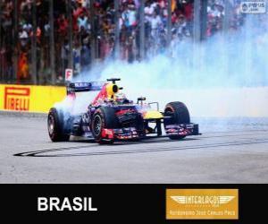 Sebastian Vettel feiert seinen Sieg in der Grand Prix von Brasilien 2013 puzzle
